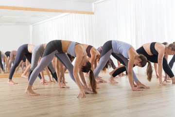 Fotomurales - Group of young authentic sporty attractive people in yoga studio, practicing yoga lesson with instructor. Healthy active lifestyle, working out in gym.