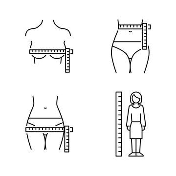 Women's body measurements: chest, waist, hip. Vector icons line style