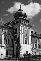 wieża, fragment pałacu czarno-biały