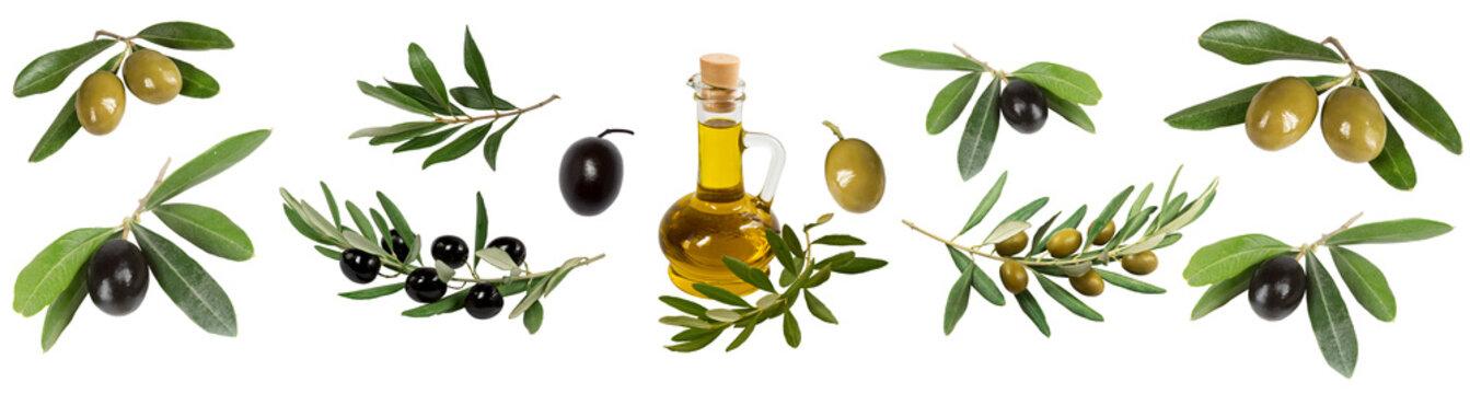 Collage of olives, olive branches, olive oil bottles