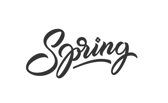 Spring hand drawn lettering. Vector isolated calligraphy inscription for print design and t shirt. Spring, black lettering. Ready text isolated on white background.