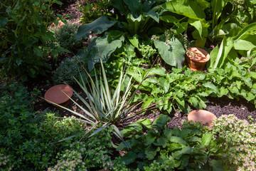 réservoir d'eau en terre cuite dans un jardin