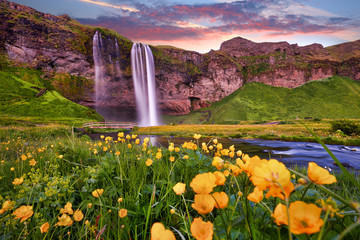 Incredible sunset on Seljalandsfoss. One of the most beautiful waterfalls on the Iceland, Europe. Popular and famous tourist attraction summer holiday destination in on South Iceland. Travel postcard.