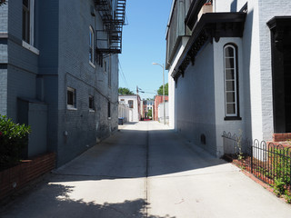 Alley in Capitol Hill.