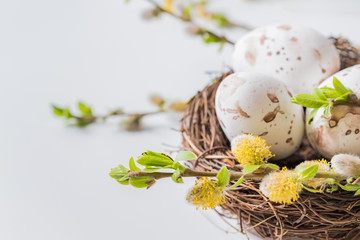 Composition with green buds on branches, decorative nest with easter eggs on a light background Wall mural