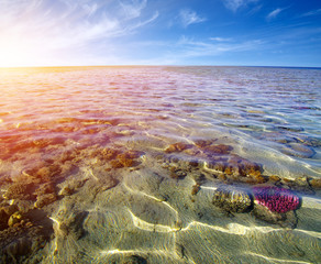 Spoed Fotobehang Oceanië Sea with coral reef and clouds