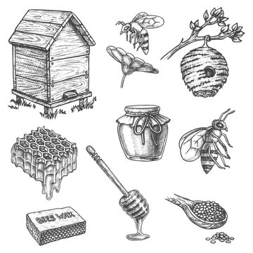 Apiary sketch icons, honey dipper, hive, honeycomb