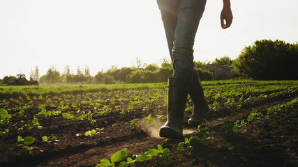 A farmer walks across a field in rubber boots on a blurred background of the tractor in motion. Concept of: Rubber boots, Lifestyle, Farmer, Slow Motion, Fields. Fotomurales