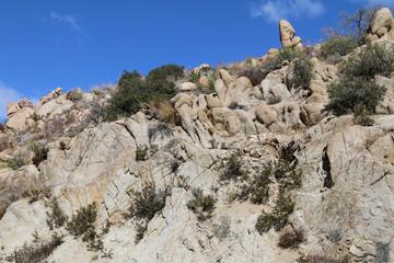 a rocky mountain slope ridge close-up