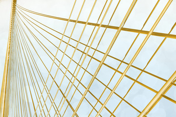 Abstract golden lines on light blue background
