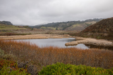 California Landscapes - Driving along State road 1