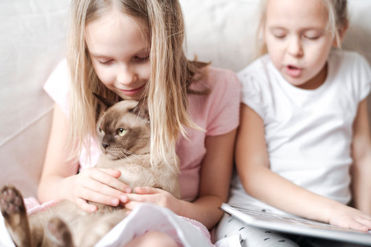 Smiling little girl stroking Burmese cat while her sister reading a book