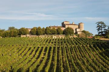 France, Nouvelle-Aquitaine, Department Gironde, Bordeaux wine region, vineyards and Chateau Lacaussade