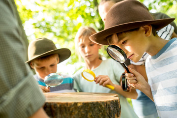 School children examining annual rings of a tree trunk