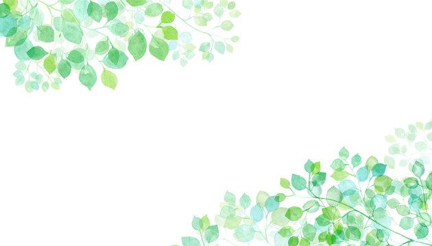 木漏れ日の水彩イラスト 2隅装飾フレーム トレースベクター(2つの木の葉群間のレイアウト変更のみ可能)