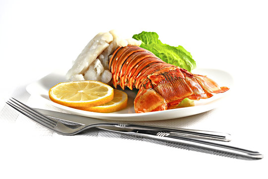 Grilled lobster tail served on a white plate isolated on white, shallow focus