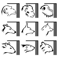 A set of nine illustrations about laboratory experiments on animals and keeping them locked up. Monkeys, dogs, rats, etc.