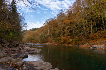 Clean mountain river in the autumn forest.