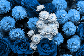 Tuinposter Bloemen Bouquet of roses and chrysanthemums close up. Beautiful blue flower background. Floral backdrop.