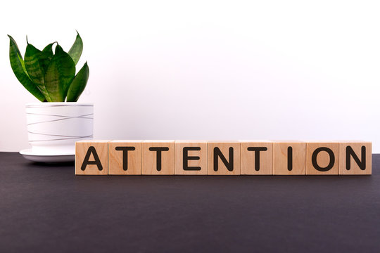 ATTENTION word concept written on wooden cubes on a dark table with a flower and a light background