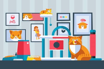 Cat pictures on the wall, vector illustration. Cute pet in flat style, simple geometric shapes. Funny cats in apartment room, animal cartoon characters. Home of a cat lover, indoor playground for pets