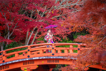 Wall Mural - Japanese girl in kimono dress and Autumn park