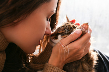 Portrait of young woman holding cute siberian cat with green eyes. Female hugging her cute long...