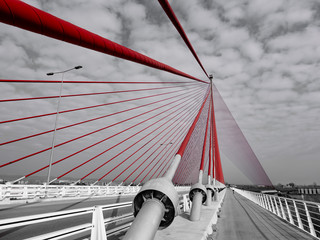 Cable-stayed bridge of Castilla la Mancha, picture developed as selective desaturation maintaining the colour saturation only in bridge wires.