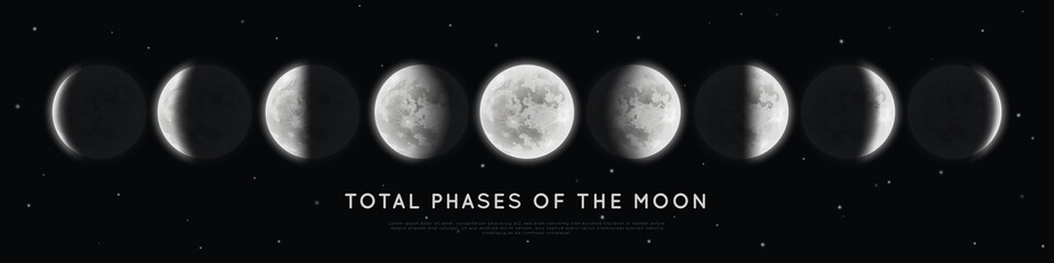 Realistic phases of the moon. Vector elements lunar collection. Moonlight Fototapete
