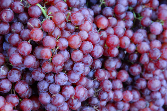 Soft focus group of fresh ripe red grapes in the market.Red wine grapes background.A lot of ripe grapes fruit for wine industry
