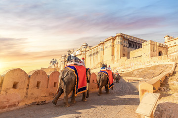 Tourists on the elephants in Amber Fort, Jaipur, Rajasthan, India Fotomurales