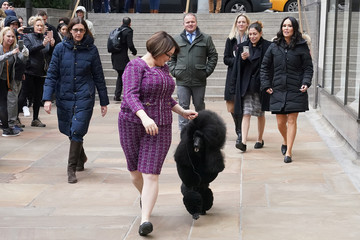 Handler Chrystal Murray runs Siba, a standard poodle, that was named best in show at the Westminster Dog Show to a photo opportunity in New York City