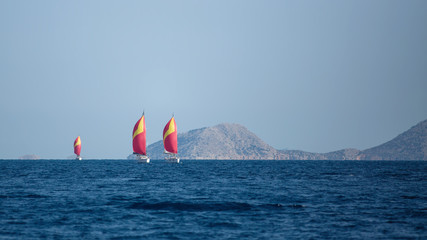 Wall Mural - Sailing yacht Regatta at the Aegean Sea, Greece.