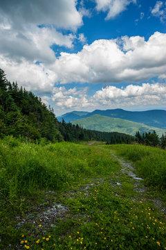 Top of Mount Mansfield in Vermont