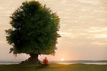 Buddhist monk in meditation under the tree at beautiful sunset or sunrise background
