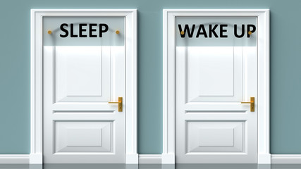 Sleep and wake up as a choice - pictured as words Sleep, wake up on doors to show that Sleep and wake up are opposite options while making decision, 3d illustration