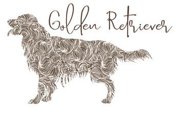 Golden retriver