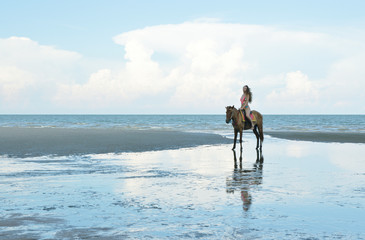 Sexy woman in pink bikini riding horse on the beach over sea and sky, Summer holiday and travel concept