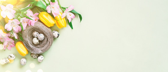Wall Mural - Easter festive banner with quail eggs in the nest decorated with flowers