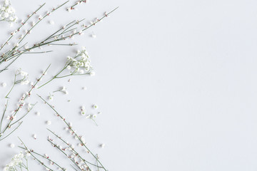Flowers composition. White flowers on gray background. Spring concept. Flat lay, top view, copy space