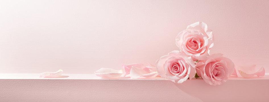 Pink rose petals set on pastel pink background