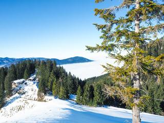 Winterwandern in den Bayerischen Alpen - Fischbachau