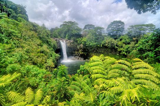 Rainbow  Falls  located in Hilo, Hawaii.