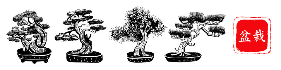 Set of 4 Bonsai trees. Vector hand drawn black and white illustration on a white background. Inscription in Japanese Bonsai characters.
