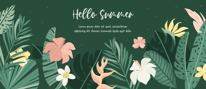 Hello Summer horizontal tropical banner. Vector jungle illustration. Greenery, palm leaves, banana leaf, hibiscus, plumeria flowers. Place for your text.