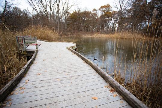 Ojibway Park Peaceful Natural Wood Boardwalk Trail
