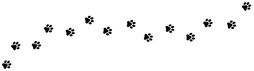 Paw print foot trail. Dog, cat paw print. Vector Fotomurales