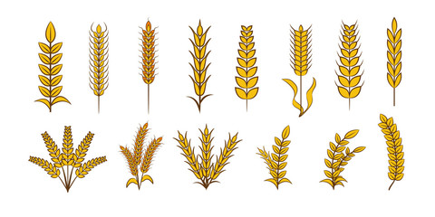 Wheat vector set collection graphic clipart design