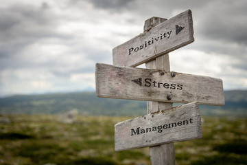 Positivity, stress and management text on wooden road sign outdoors in nature.