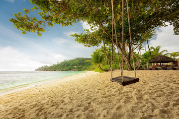 Rope swing on a tropical beach in Seychelles. Exotic palm trees and blue sky. Holiday serenity vacation concept